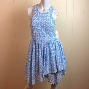 Altar'd State Blue White Lace Skater Dress